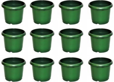 E-Plant Plant Container Set(Pack of 12, Plastic)