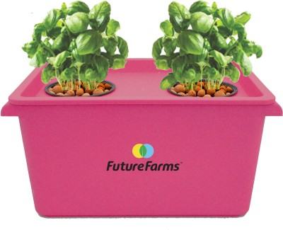 Future Farms Hydroponic Starter Kit - Future Farms Darwin Junior (Pink) Plant Container Set