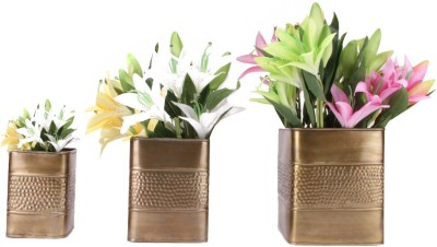Blessed Garden Plant Container Set(Pack of 3, Metal)