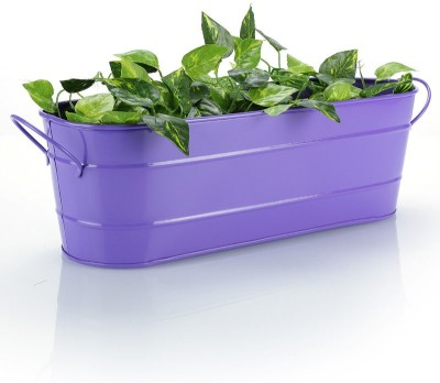 Green Girgit Plant Container Set