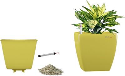 Yuccabe Italia Stella Yellow Self Watering Planter Plant Container Set