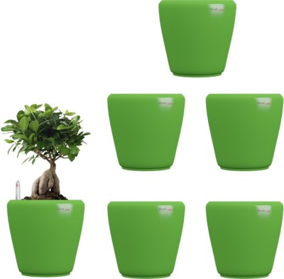 Yuccabe Italia Stoic Green Self Watering Plant Container Set