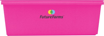 Future Farms Hydroponic Starter Kit - Darwin Penta (Fuschia) Plant Container Set(Plastic)