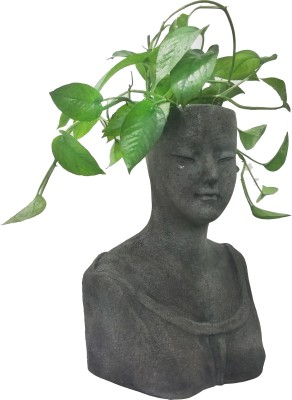 Ambience Queen Bust Planter Plant Container