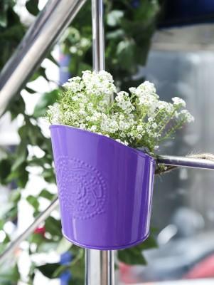 Color Palatte Color Palatte Hanging Purple Planter Plant Container