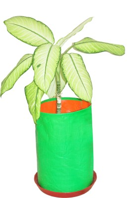 Gro Smart Plant Container