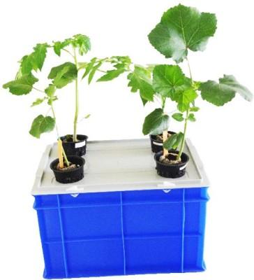 GZ Green Aeroponic 4 plant Hero kit Plant Container