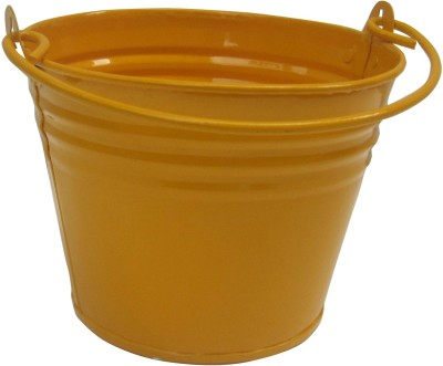 Green Gardenia Plant Container