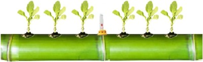 GZ Green Hydroponic 6 Plant growing Kit using Natural Bamboo with water level indicator (Fantastic-Bamboo System) Plant Container