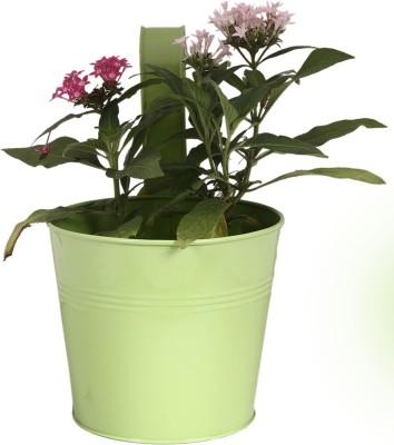 TrustBasket Single Pot Railing Planter Plain Plant Container