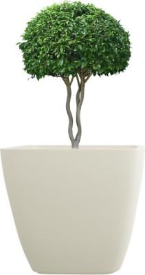 yuccabe italia Plant Container
