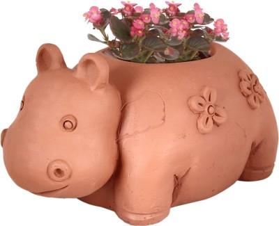 TrustBasket Hippo Planter Terracotta Handmade Plant Container