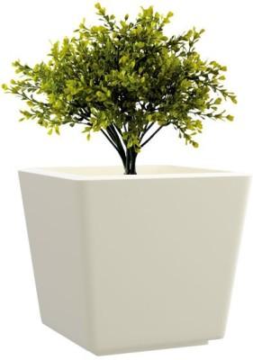 yuccabe italia gk Plant Container