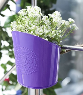 Color Palatte Plant Container(Metal, External Height - 16 cm)