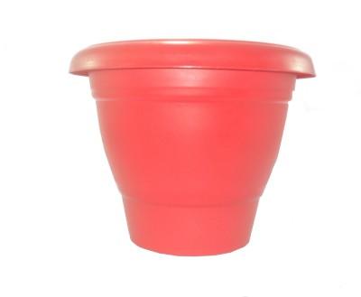 Naina Plant Container