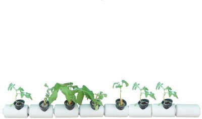 GZ Green Hydroponic 7 plants tube system ( eazy to grow ) Plant Container