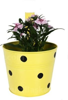 TrustBasket Single pot Railing planter Plant Container