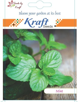 Kraft Seeds Mint Seeds Herb Seeds (50 Seeds) Seed