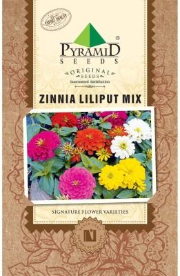 PYRAMID SEEDS Zinnia Lilliput Mix Seed