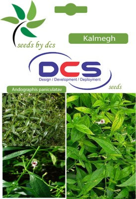 DCS Kalmegh Forest Seeds(5g Seeds Per Pack) Seed
