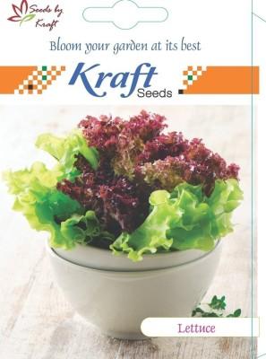 Kraft Seeds Lettuce Iceberg Improved Quality Seed