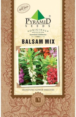 PYRAMID SEEDS Balsam Mix Seed