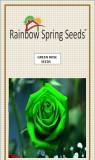 Rainbow Spring Seeds GreenRose Seed (50 ...