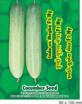 Indous Agriseeds Indous Megha F1 Hy cucumber 4gm 200 seeds Seed