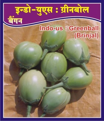 Indous Agriseeds Indo Us Greenball 200 Seeed Peck Seed
