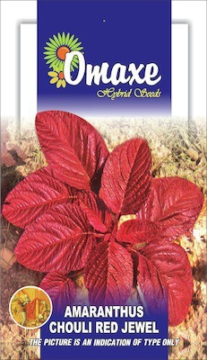 Omaxe AMARANTHUS RED CHOULAI JEWEL 50 SEEDS BY OMAXE Seed