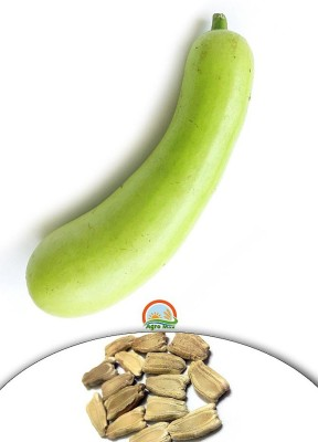 Agro Max Bottle Gourd Export Quality Vegetable Seed