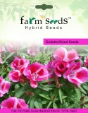 FARM SEEDS Godetia Mixed 2 Packet Seeds ...