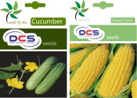 DCS Cucumber And Sweet Corn Seeds(Pack Of 2 Per Pack 50 ) Seed(50 Per Packet)