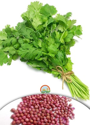 Agro Max Coriander Export Quality Vegetable Seed(250 per packet)