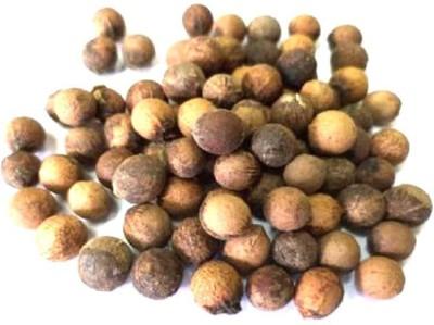 Seedbazaar Chandan (Sandalwood) Seed