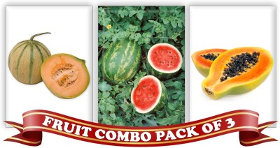 Real Seed Fruit Combo Pack - Musk Melon, Water Melon and Honey Dew Dwarf Papaya F1 Hybrid Seeds Seed