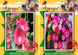 Airex hollyhock and Midday Flower Seeds (15 seeds per packet) Seed(15 per packet)