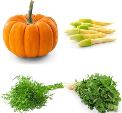 Farm Seeds Pumpkin & Baby Corn & Dill & Methi Seed
