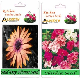 Alkarty Mid Day and Clarkia (Winter) Seed(20 per packet)