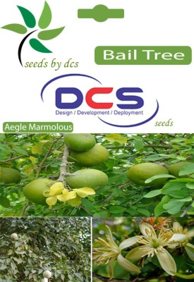 DCS Bail Tree Forest Plants (20 Seeds Per Packet) Seed