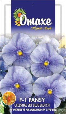 Omaxe PANSY CELESTIAL SKY BLUE BLOTCH WINTER FLOWER 10 SEEDS PACK BY OMAXE Seed