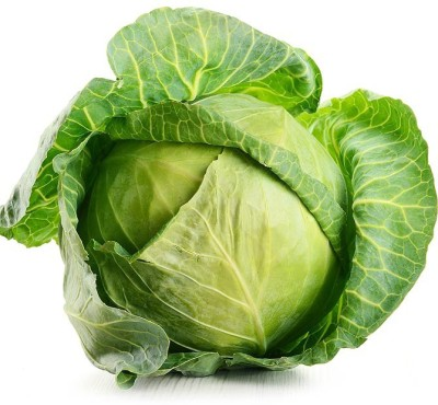 Real Seed Cabbage F1 Hybrid Imported Seed