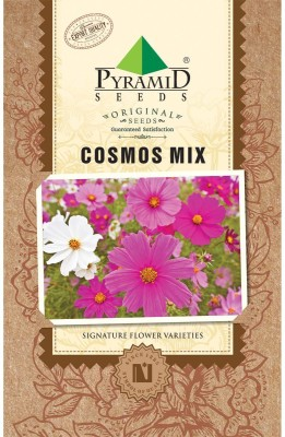 Pyramid Seeds COSMOS MIX Seed
