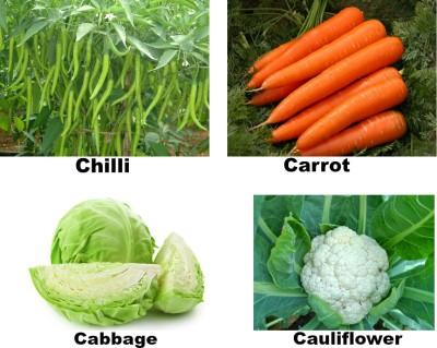 Easy Gardening Chilli, Carrot, Cabbage, Cauliflower F1 Hybrid Seed