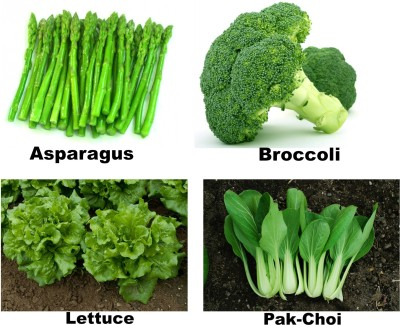 Easy Gardening Asparagus, Broccoli, Lettuce, Pak choi F1 Hybrid Seed