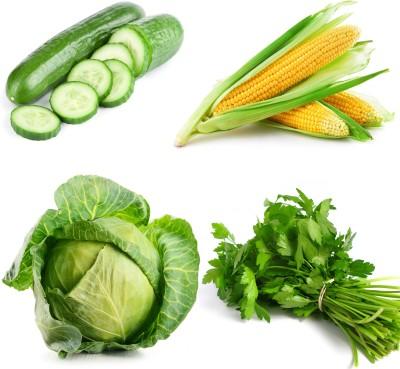 Farm Seeds Cuccumber & Corn & Cabbage & Coriander Seed