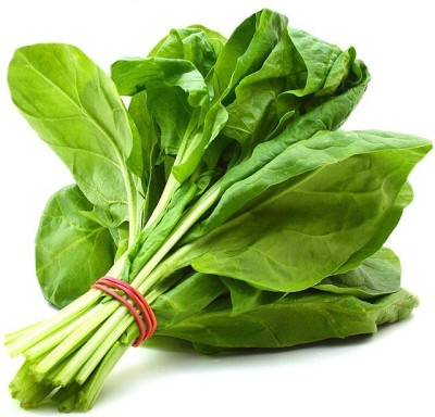 Real Seed Green Spinach Hybrid Seed