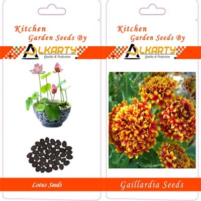 Alkarty Lotus And Gaillardia Seed