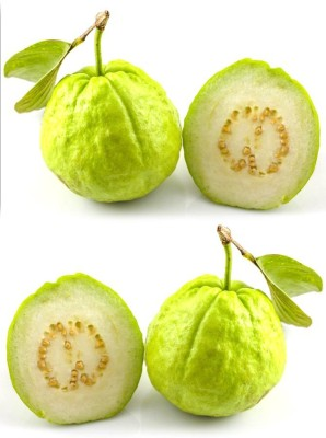 Real Seed Indian Guava (Amrood) Hybrid Imported Fruit Seed