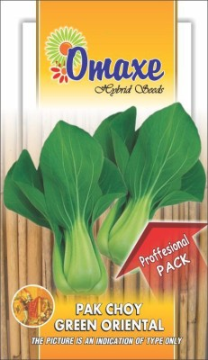 Omaxe PAK CHOY 10GM PROFESSIONAL SEEDS PACK Seed